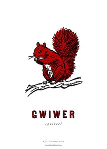 Image of fforest cymraeg prints: gwiwer (squirrel)