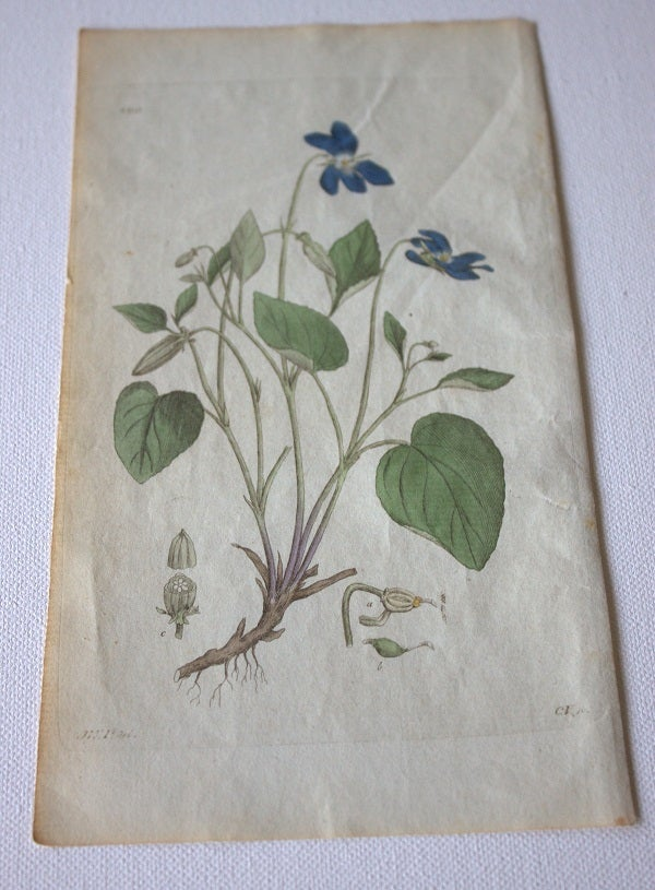 Image of Swedish Antique Engravings (1800-1830)  - Blue