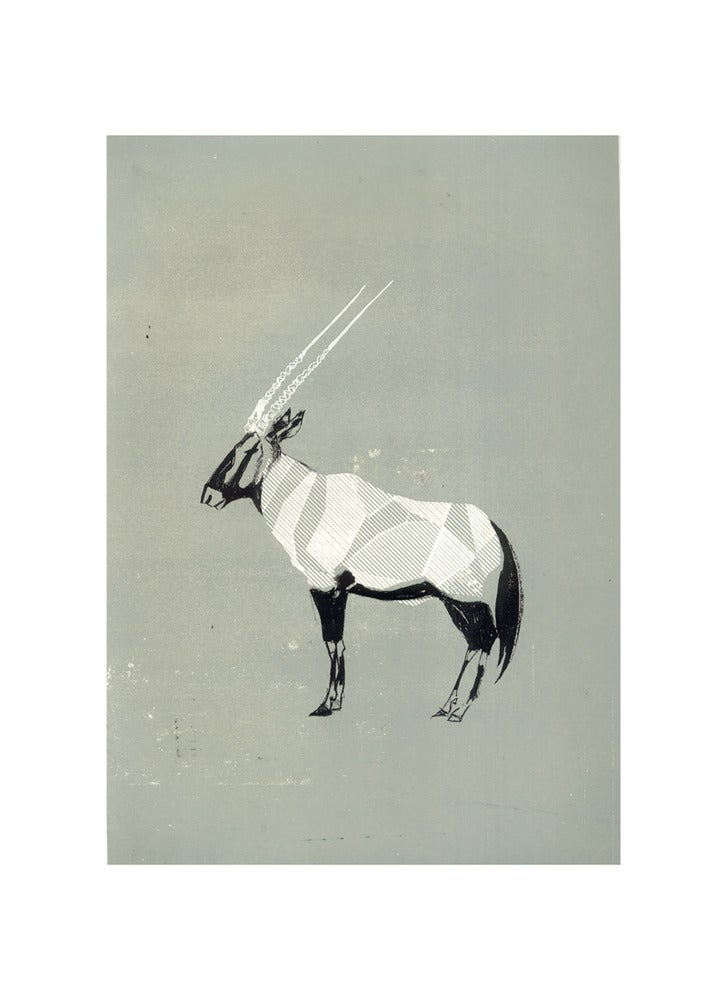 Image of Oryx - Grey