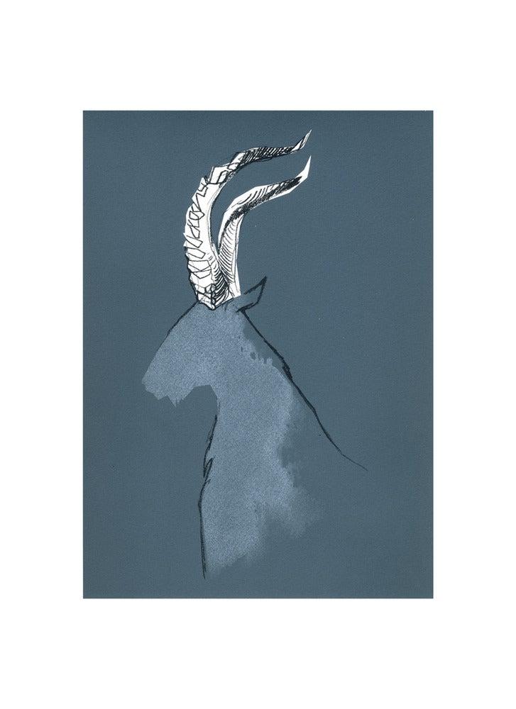 Image of Ibex