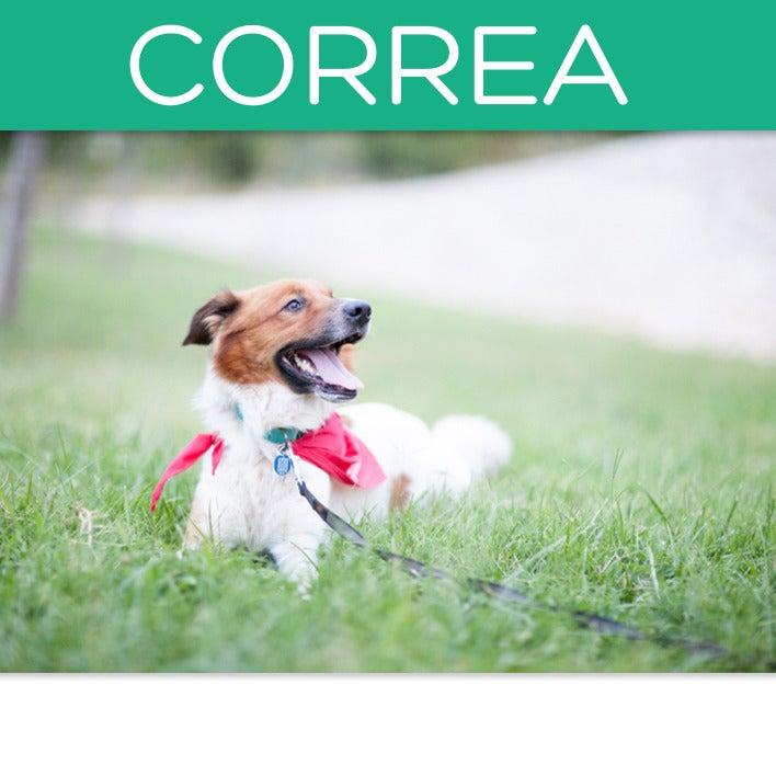 Image of Correa Lobo descafeinado