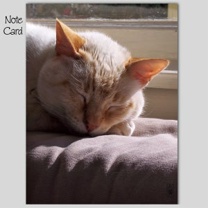 Image of Set of 3 Note Cards, Dude Note Card #3