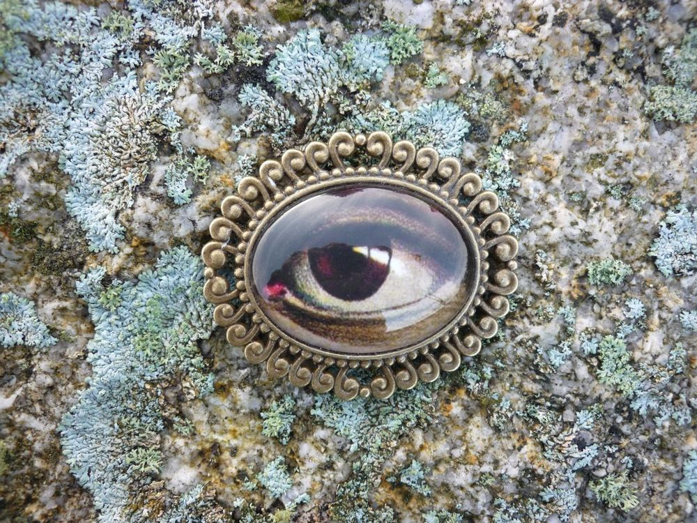 Image of Antique Memento Mori Style Large Eye BROOCH PIN - From the OMARINA Heirloom Collection