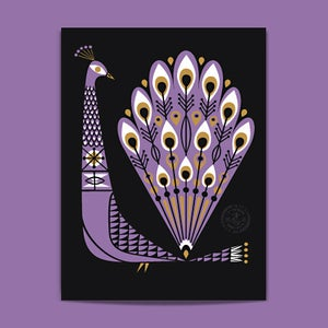 Image of Peacock-Purple