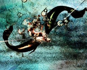 Image of Spinning - 8x10 limited edition print
