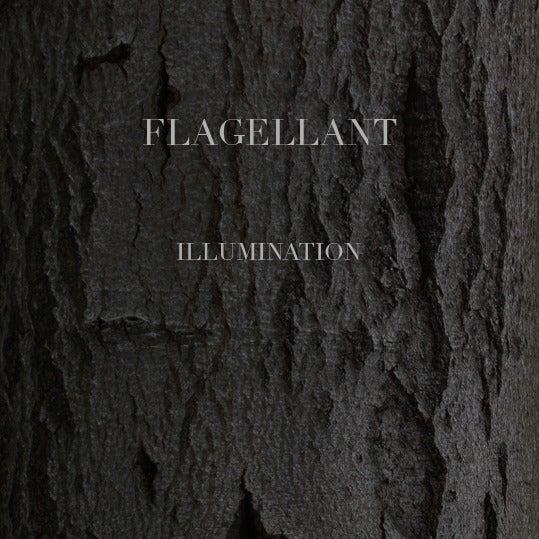 """Image of Flagellant - Illumination 7"""""""