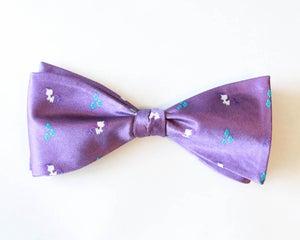 Image of Raribow-tie
