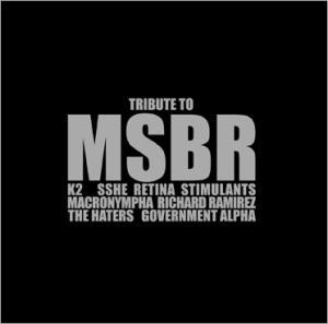 Image of V.A. - Tribute To MSBR LP