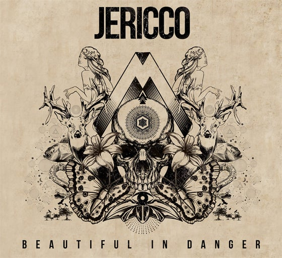 Image of JERICCO Debut Record - Beautiful In Danger 2013