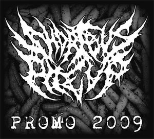 Image of Promo 2009 Download Package