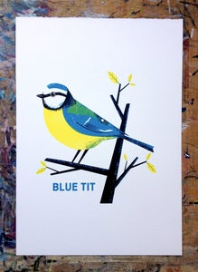 Image of Blue Tit