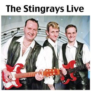 Image of The Stingrays Live - CD