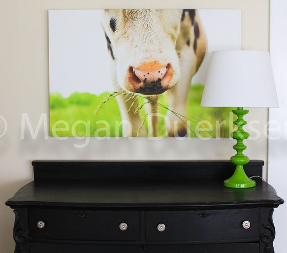 Image of Cow in Grass Canvas