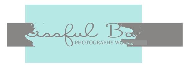 Blissful Baby Workshop