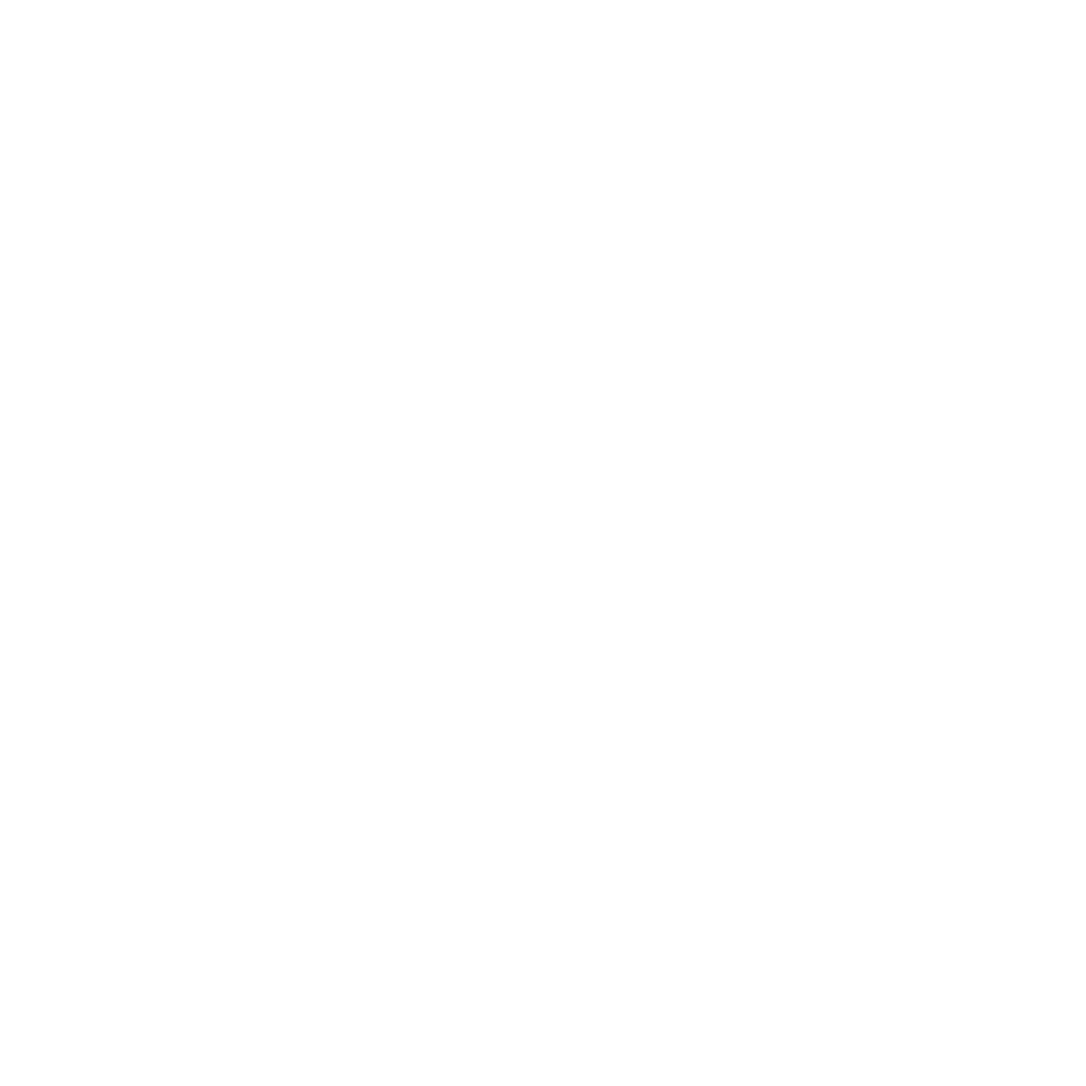 The Smile Brand