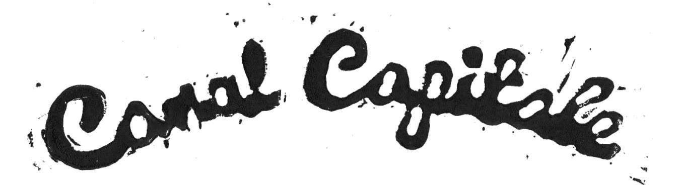 Canal Capitale