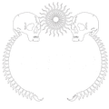 Mudface Official Merch