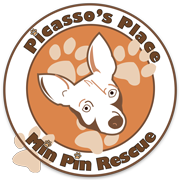 Picasso's Place Min Pin Rescue, Inc.
