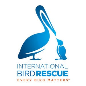 BirdRescue
