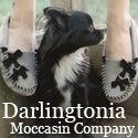 Darlingtonia Moccasin Company
