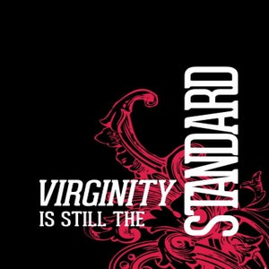 Image of Virginity is Still the Standard (Audio Teaching)