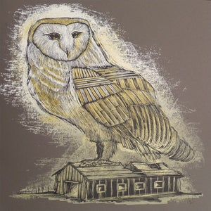 Image of Reconstructed Barn Owl Charcoal Brown Colorway