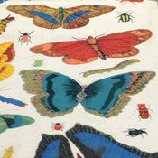 Image of Illustration Butterfly Insect Beetle Design Legacy Hand Print Linen Fabric Drapery Uph DLSO504