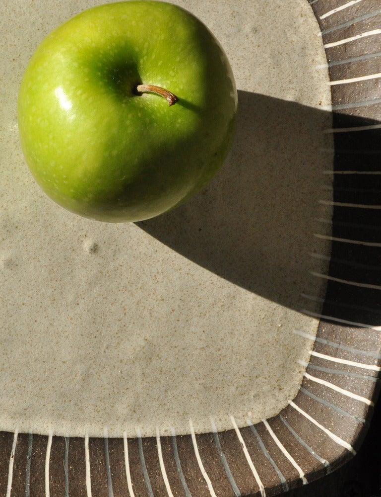 Image of radial platter