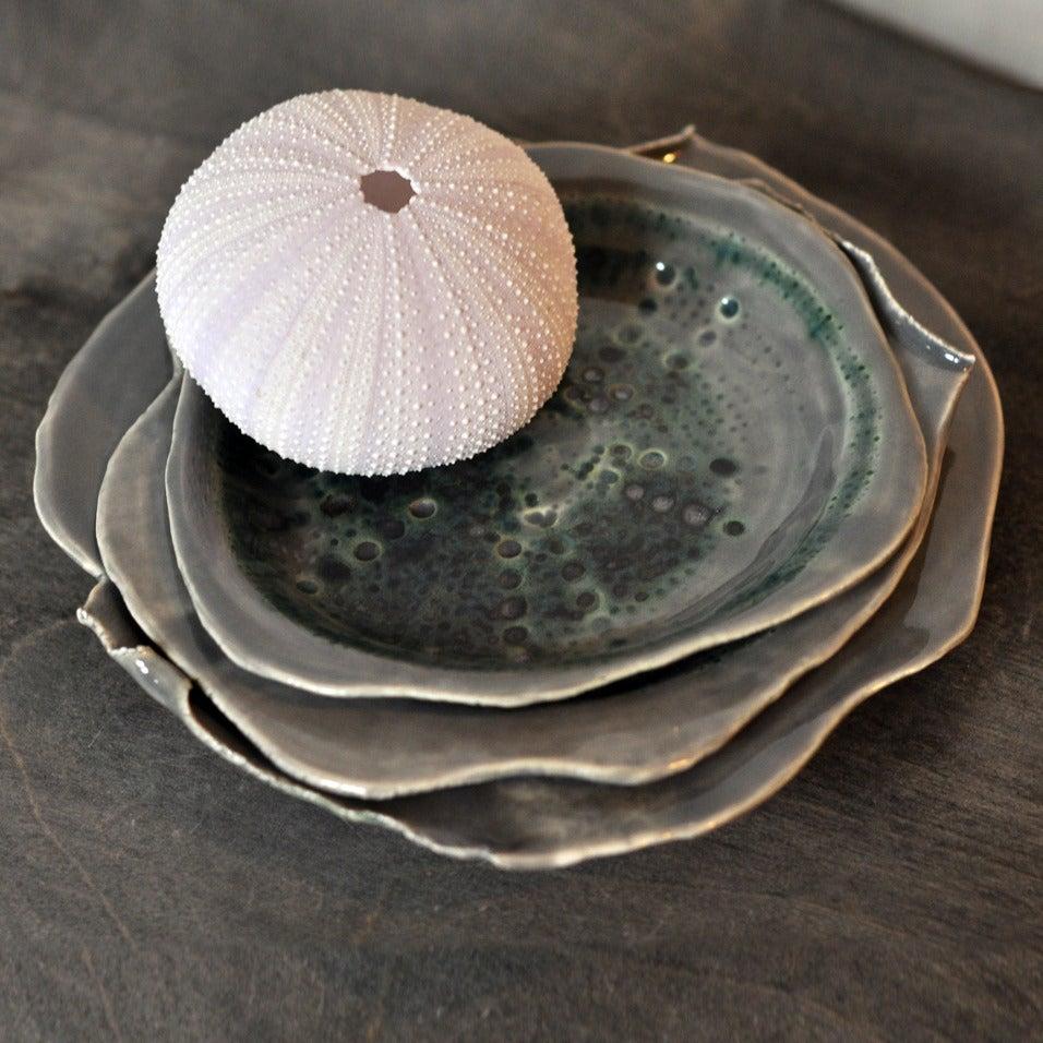 Image of sea urchin nesting plates #3