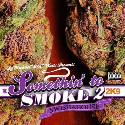 Image of SOMETHING TO SMOKE 2 2K9