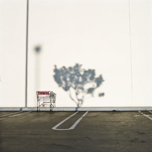 Image of Rachel Wolfe