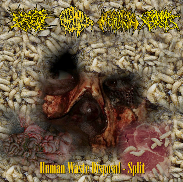 Image of Human Waste Disposal Split CD 2010