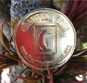 Image of Gratitude Coin