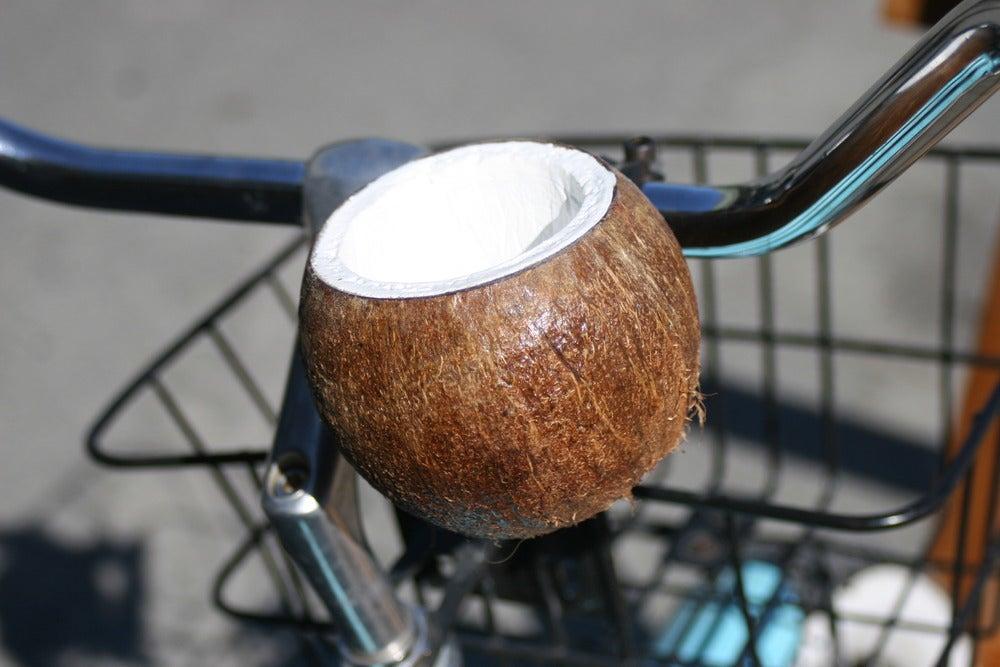 Image of Monkey Nuts~ Cruiser bike beverage holder