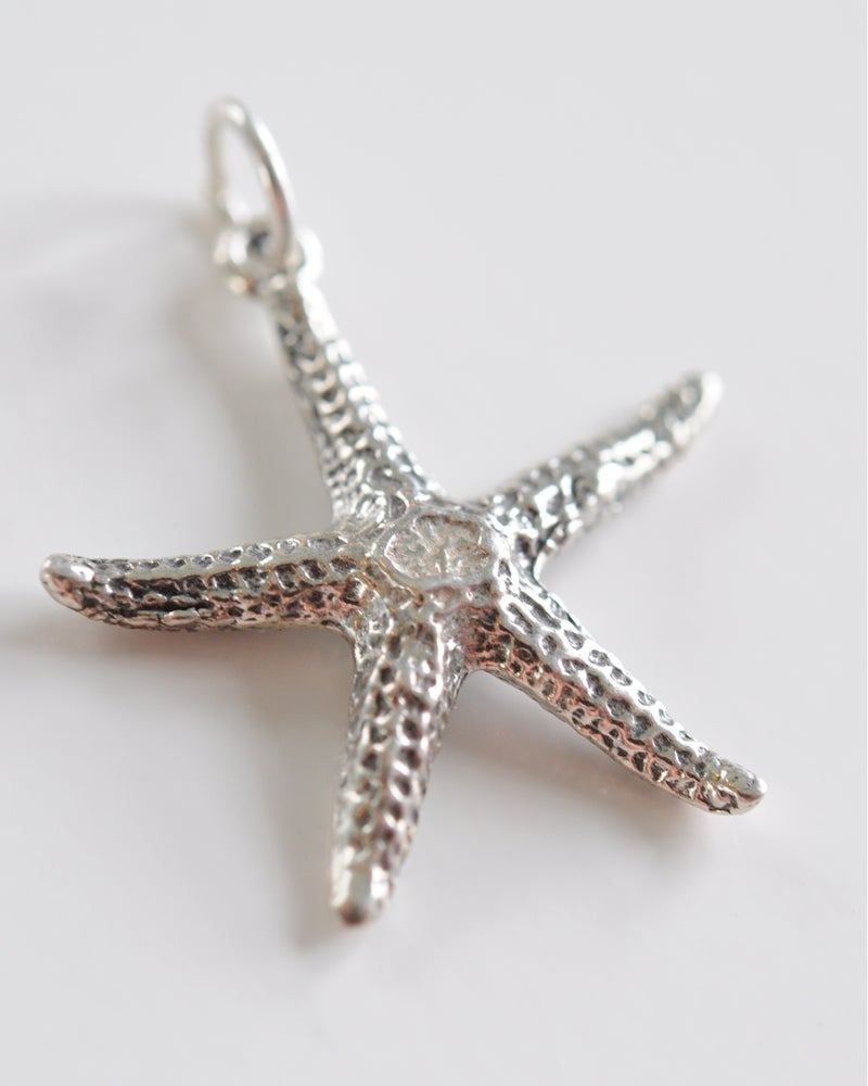 Starfish detailed nantucket by the sea for Nantucket by the sea