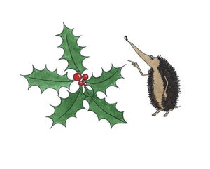 Image of 8 pack: Christmas Hedgehog cards