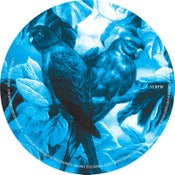 Image of Moire Patterns - Essential Play Ep I - KNR 006