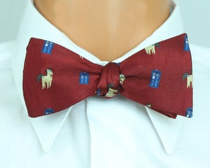 Image of Doctor Whoovesbow-tie