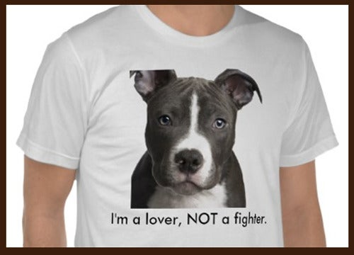 Image of I'm a lover not a fighter t-shirt