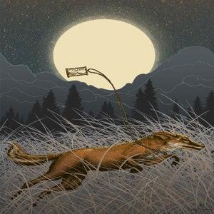 Image of Fox Fight Fox Flight
