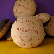 Image of Chocolate Digestive Printed Cushion