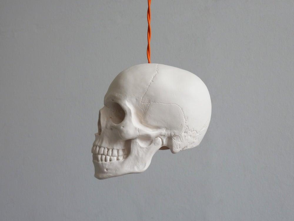 Image of Skull Pendant Light