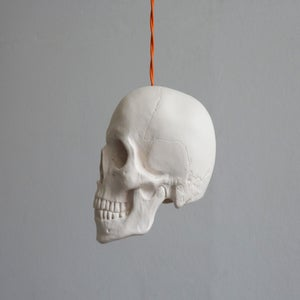 Image of Skull Pendant Light