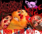 "Image of Waste Pig/Goretorngroin ""BORN TO DIE"" Split"
