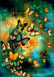 Image of Lily Greenwood Signed Giclée Print - Butterflies on Blues/Greens - A2 - Limited Edition