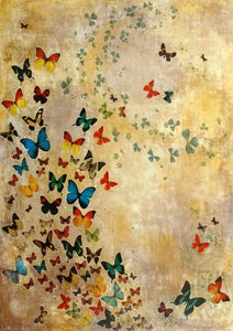 Image of Lily Greenwood Signed Giclée Print - Summer Butterflies - A2 - Limited Edition