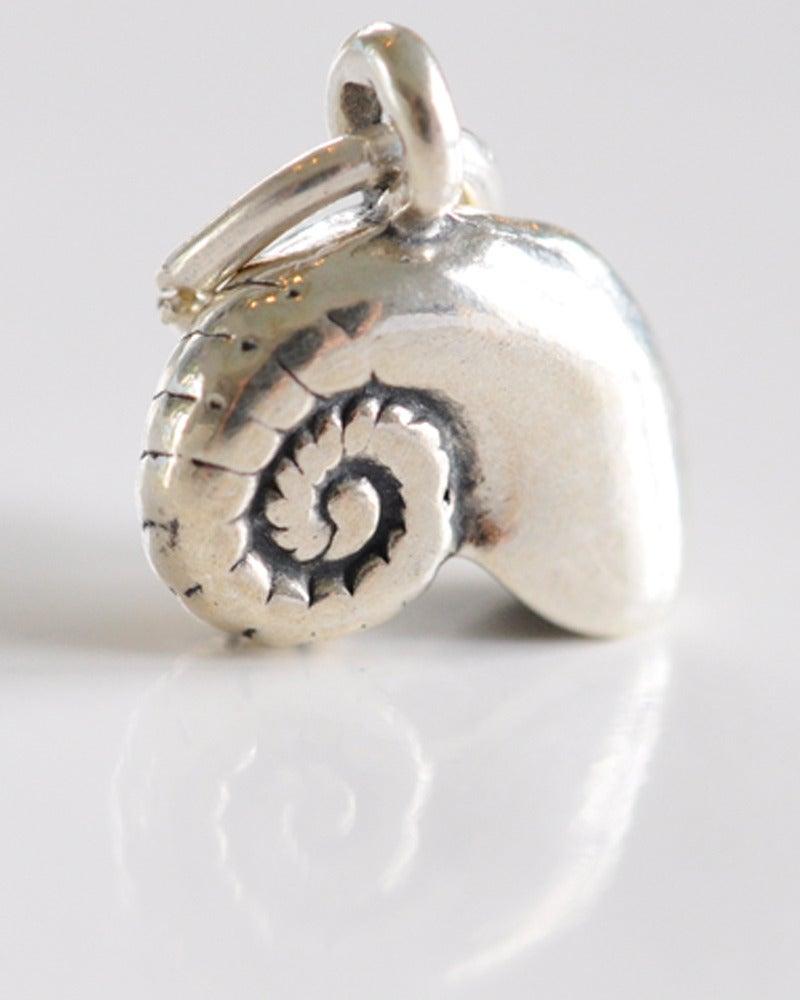 Image of Shell - Moon