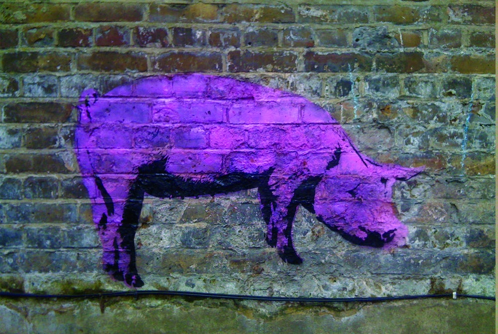 Image of Pig - Screenprint