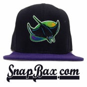 Image of Vintage Deadstock Tampa Bay Devil Rays Black Purple New Era Snapback Cap