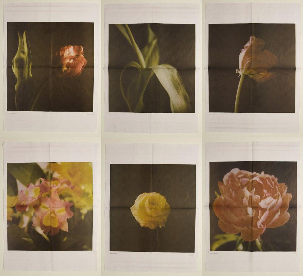 Image of Spring 2011 Zine